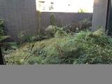 作7房没压力,花园100平,3面采光户型实用,万科棠樾专,家