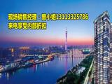 天誉半岛花园 全新一手 370方1500万 一口价内部折扣