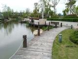滨江体育公园区一线水景 开发商一手开发5期联排别墅 即将15