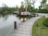 滨江体育公园区一线水景 开发商一手开发5期联排别墅 即将26