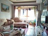 中海东郡 两室两厅 纯南户型