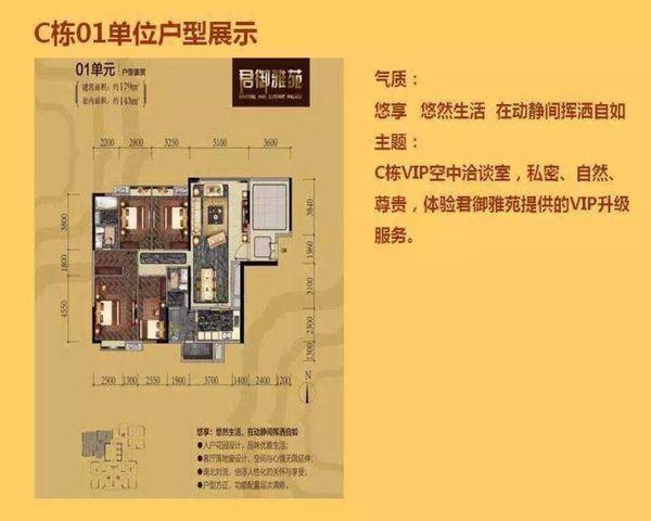 珠江新城 尚东君御 地铁口上盖 CBD中轴线-室内图-1