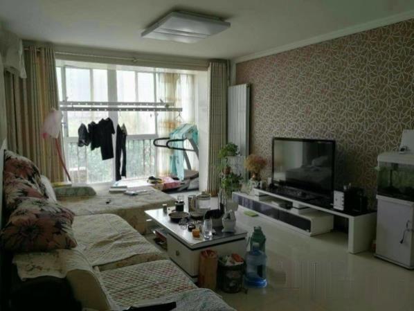 银都花园精装3室南北通透阳面大客厅没有税带家具电-室内图-1