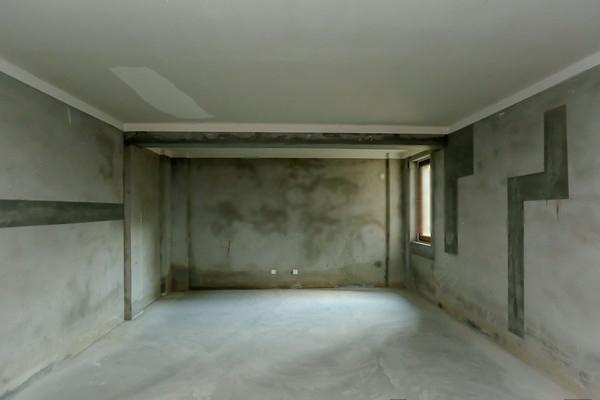 久事名墅纯独栋地铁沿线毛坯房照片实拍主要房子好地段好